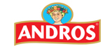 Andros logo site web